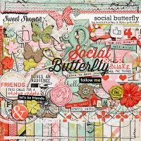 Social Butterfly by Krystal Hartley and Libby Pritchett