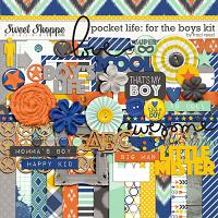 Pocket Life: For The Boys Kit by Traci Reed