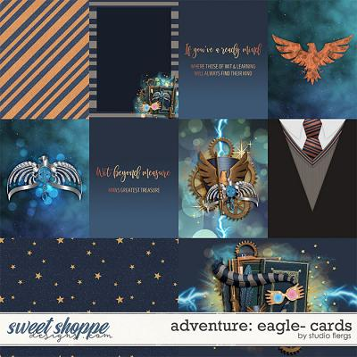 Adventure: Eagle- CARDS by Studio Flergs