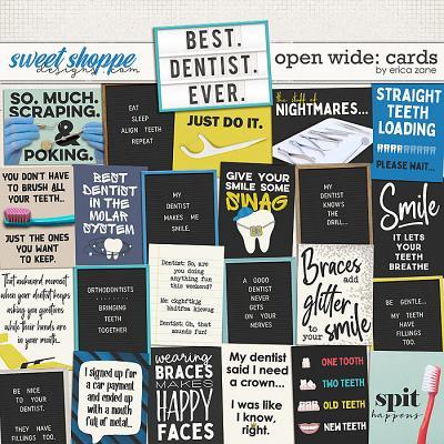 Open Wide: Cards by Erica Zane