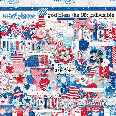 God Bless The US: Indivisible by Traci Reed