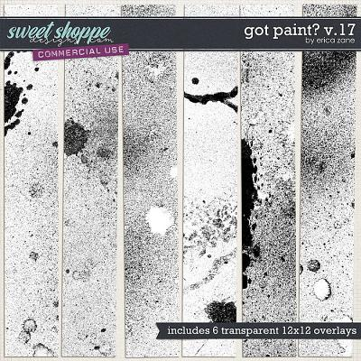 Got Paint? v.17 by Erica Zane