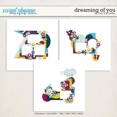 Dreaming Of You by Two Tiny Turtles