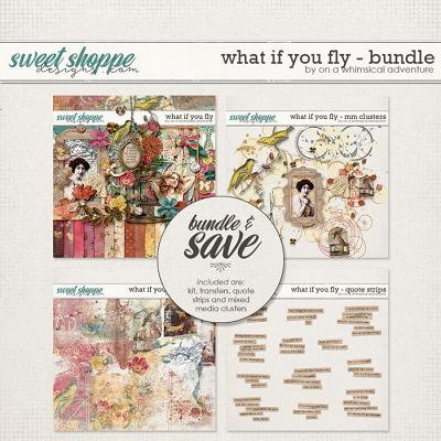 What If You Fly Bundle by On A Whimsical Adventure