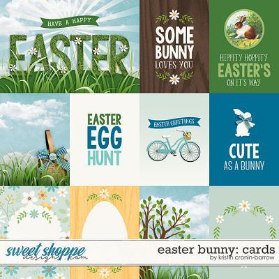 Easter Bunny: Cards by Kristin Cronin-Barrow