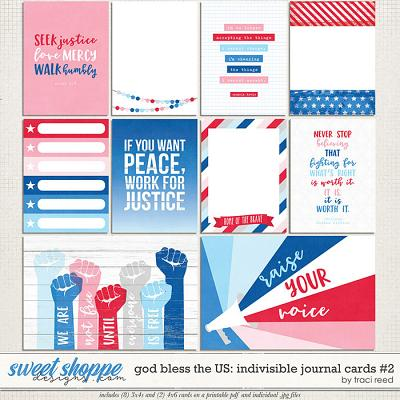 God Bless The US: Indivisible Journal Cards #2 by Traci Reed