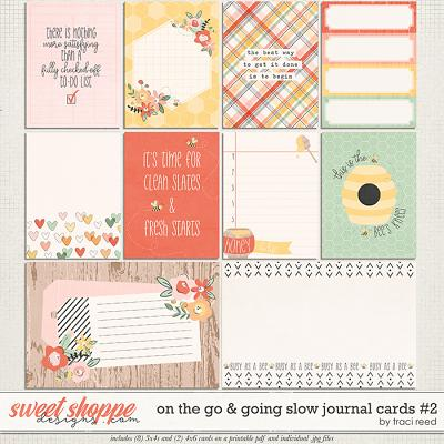 On The Go & Going Slow Cards #2 by Traci Reed