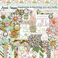 Happiness Is: Knowing You Are Lucky by Meghan Mullens & Tickled Pink Studio