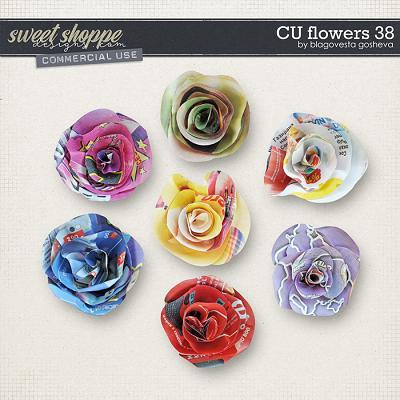 CU Flowers 38 by Blagovesta Gosheva