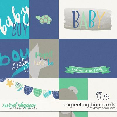 Expecting Him Cards by Dream Big Designs