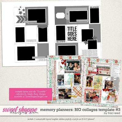 Memory Planners - Big - Collages #3 by Traci Reed