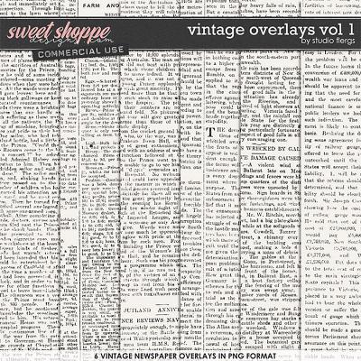 Vintage Overlays VOL 1 by Studio Flergs