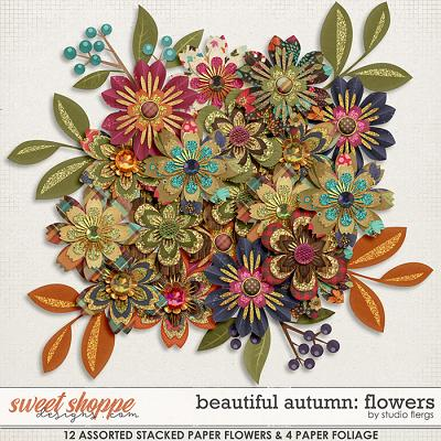 Beautiful Autumn: FLOWERS by Studio Flergs