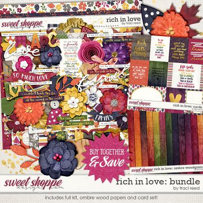 Rich In Love: Bundle by Traci Reed