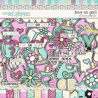 Boy or Girl - Kit by Laura Wilkerson