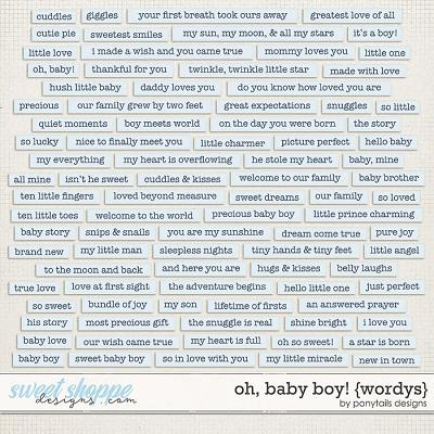 Oh Baby Boy! Wordys by Ponytails