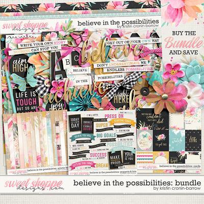 Believe in the Possibilities: Bundle by Kristin Cronin-Barrow