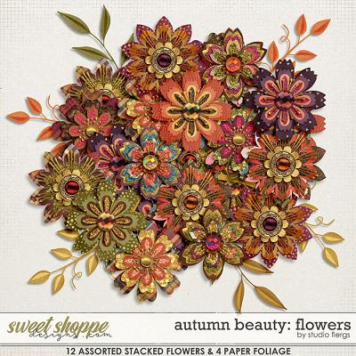 Autumn Beauty: FLOWERS by Studio Flergs