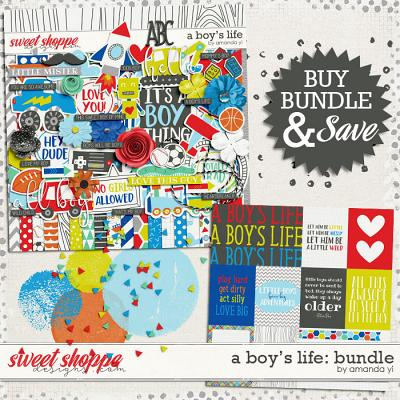 A Boy's Life: Bundle by Amanda Yi