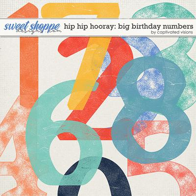 Hip Hip Hooray: Big Birthday Numbers by Captivated Visions