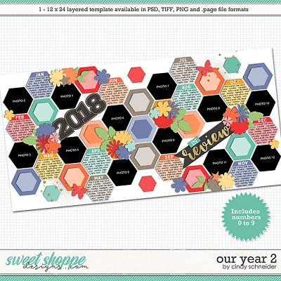 Cindy's Layered Templates - Our Year 2 by Cindy Schneider
