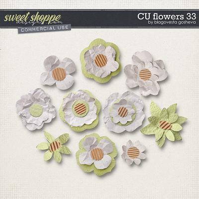 CU Flowers 33 by Blagovesta Gosheva