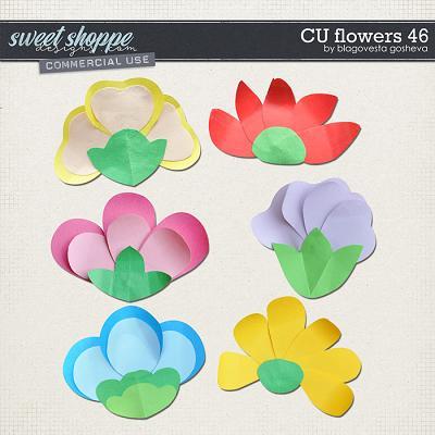 CU Flowers 46 by Blagovesta Gosheva