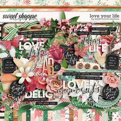 Love your Life by Kristin Cronin-Barrow