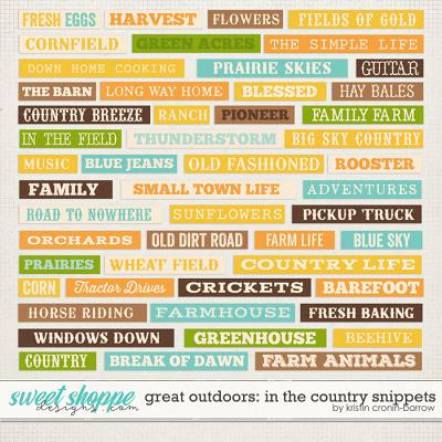 Great Outdoors: In the Country Snippets by Kristin Cronin-Barrow
