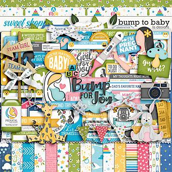 Bump To Baby by LJS Designs