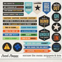 Excuse the Mess: Snippets & Bits by Kristin Cronin-Barrow