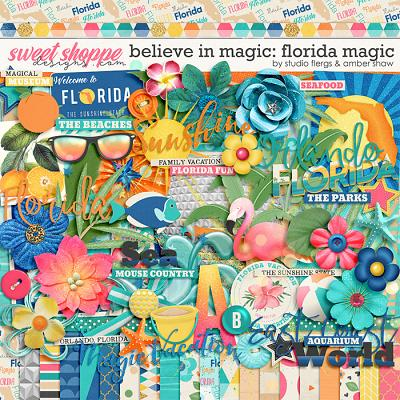 Believe in Magic: Florida Magic by Amber Shaw & Studio Flergs