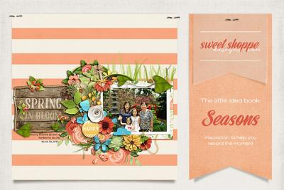 Sweet Shoppe's Little Idea Book: Seasons
