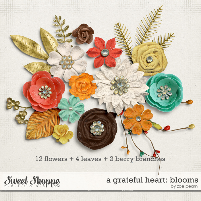 A Grateful Heart: Blooms by Zoe Pearn