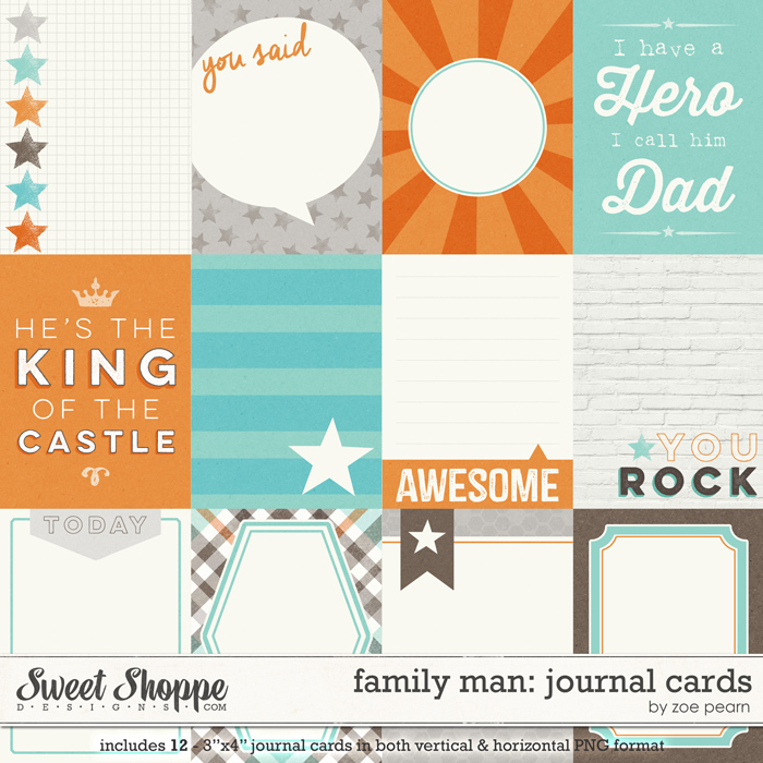 Family Man: Journal Cards by Zoe Pearn