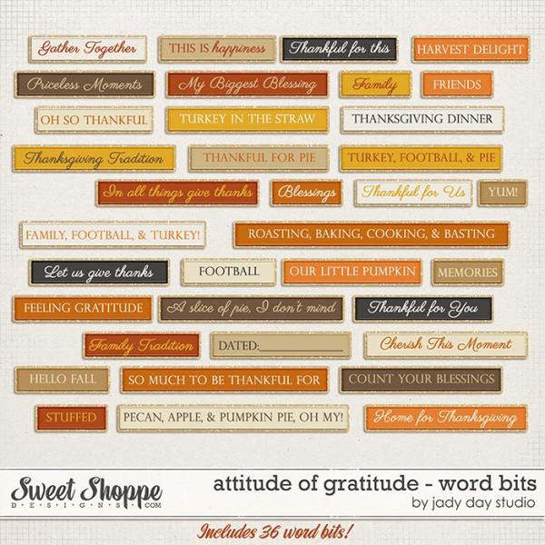 1jadyday-attitudeofgratitude-wb