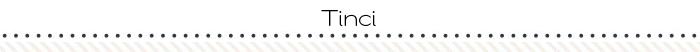 2016-blog-layoutseparator-Tinci