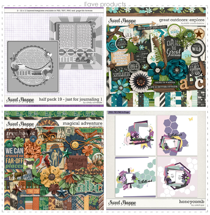 4in14-template-SaarFaveProducts