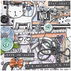 Grumpy Kitty by Lauren Grier and Jenn Barrette