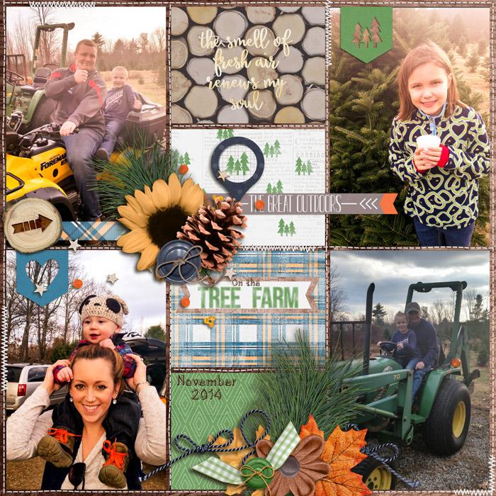 On-the-Tree-FarmGALLERY