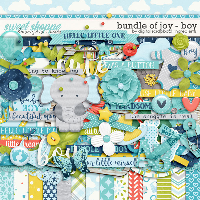 Bundle Of Joy - Boy by Digital Scrapbook Ingredients
