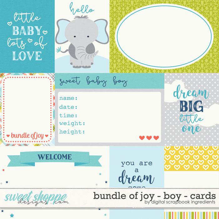 Bundle Of Joy - Boy | Cards by Digital Scrapbook Ingredients