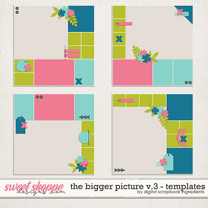 The Bigger Picture Templates Vol.3 by Digital Scrapbook Ingredients