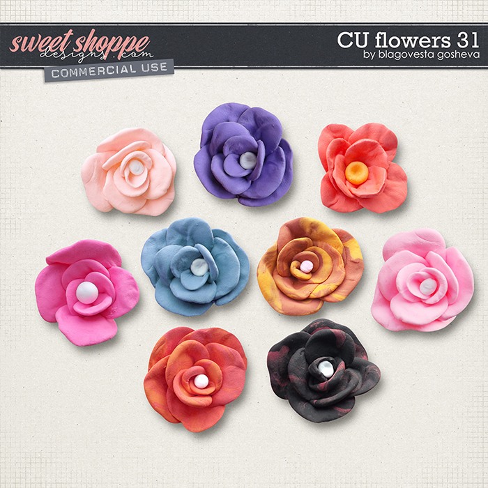 CU Flowers 31 by Blagovesta Gosheva