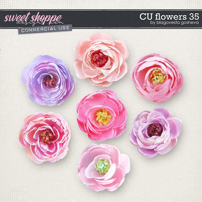 CU Flowers 35 by Blagovesta Gosheva