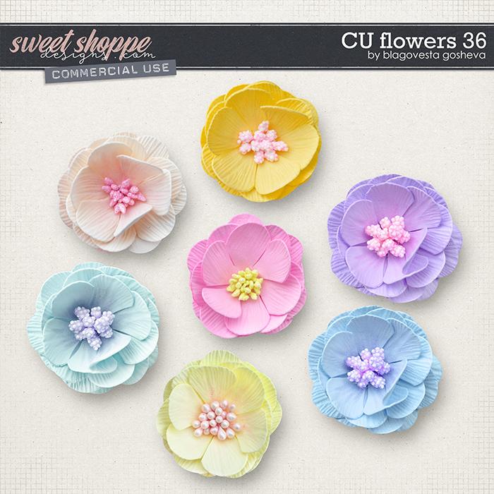 CU Flowers 36 by Blagovesta Gosheva