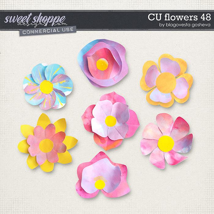 CU Flowers 48 by Blagovesta Gosheva