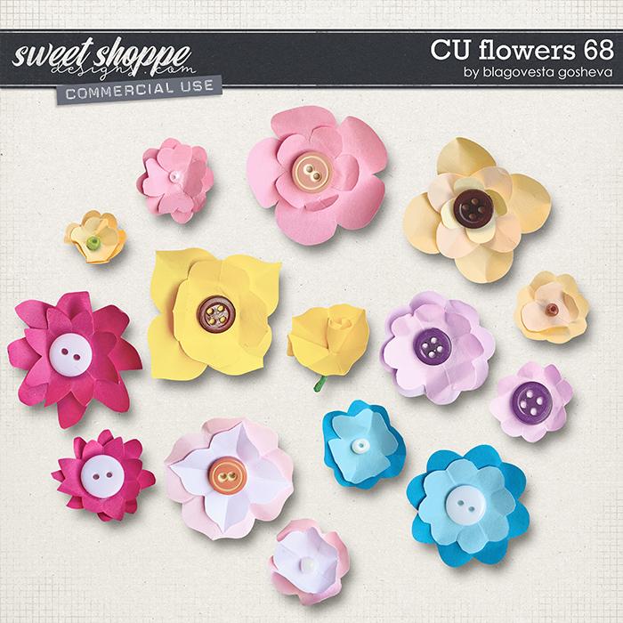 CU Flowers 68 by Blagovesta Gosheva