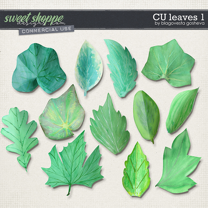 CU Leaves 1 by Blagovesta Gosheva