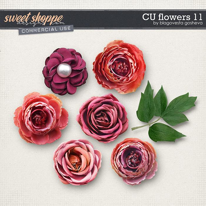 CU Flowers 11 by Blagovesta Gosheva